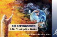 6.DIE VERSIEGELTEN GOTTES – DIE OFFENBARUNG | Pastor Mag. Kurt Piesslinger