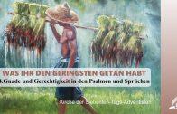 4.GNADE UND GERECHTIGKEIT IN DEN PSALMEN UND SPRÜCHEN – WAS IHR DEN GERINGSTEN GETAN HABT | Pastor Mag. Kurt Piesslinger