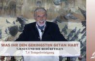 7.4 Tempelreinigung – JESUS UND DIE BEDÜRFTIGEN | Pastor Mag. Kurt Piesslinger