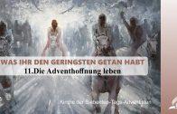 11.DIE ADVENTHOFFNUNG LEBEN – WAS IHR DEN GERINGSTEN GETAN HABT | Pastor Mag. Kurt Piesslinger