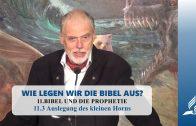 11.3 Auslegung des kleinen Horns – BIBEL UND DIE PROPHETIE | Pastor Mag. Kurt Piesslinger