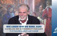 12.4 Entschlossenheit und Geduld – UMGANG MIT SCHWIERIGEN PASSAGEN | Pastor Mag. Kurt Piesslinger